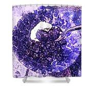 Blueberries For Breakfast Shower Curtain