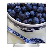 Blueberries In Polish Pottery Bowl Shower Curtain