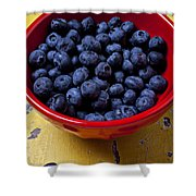 Blueberries In Red Bowl Shower Curtain