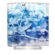 Blueberry Blues Shower Curtain