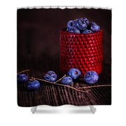 Blueberry Delight Shower Curtain