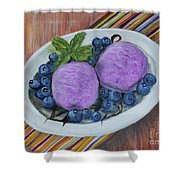 Blueberry Ice Cream Party Shower Curtain