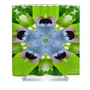 Blueberry Kaleidoscope Shower Curtain