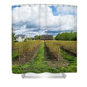 Blueberry Rows Shower Curtain