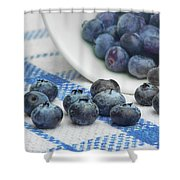Blueberry - Still Life Shower Curtain