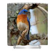 Bluebird Dad Shower Curtain