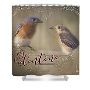 Bluebird Love Shower Curtain