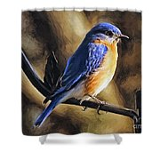 Bluebird Portrait Shower Curtain