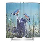 Bluebirds On Post Shower Curtain