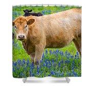 Bluebonnet Cow Shower Curtain