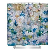 Bluebonnet Shower Curtain by Don  Wright