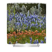 Bluebonnet Paintbrush And Prickly Pear Shower Curtain