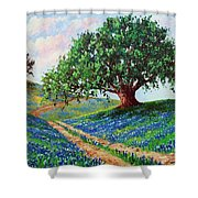 Bluebonnet Road Shower Curtain