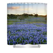Bluebonnet Sunrise And A Windmill In Texas 1 Shower Curtain