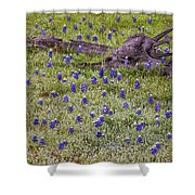 Bluebonnets And Fallen Tree - Texas Hill Country Shower Curtain