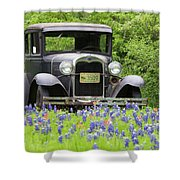 Bluebonnets And Fords Shower Curtain