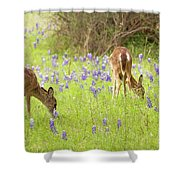 Bluebonnets And Whitetails Shower Curtain
