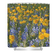 Bluebonnets And Wildflowers Shower Curtain