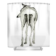 Bluedog Shower Curtain