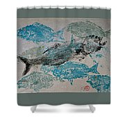 Bluefish Delight - Lunchtime  Shower Curtain