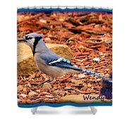 Bluejay Profile Shower Curtain