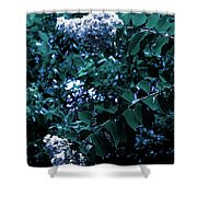 Blues And Greens Shower Curtain