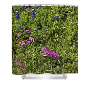 Blues And Pinks Shower Curtain