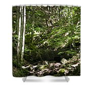 Bluestone State Park Mountain Stream West Virginia Shower Curtain