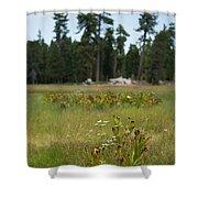 Bluff Lake Ca Wild Flowers 4 Shower Curtain