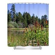 Bluff Lake Foliage 4 Shower Curtain