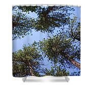 Bluff Lake Forest 2 Shower Curtain