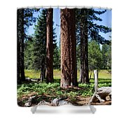 Bluff Lake Forest 3 Shower Curtain
