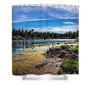 Bluff Lake  Shower Curtain