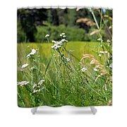 Bluff Lake Wild Flowers 1 Shower Curtain