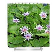 Blumen Des Wassers - Flowers Of The Water 22 Shower Curtain