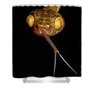 Blunthead Tree Snake Shower Curtain