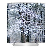 Blurred Shot Of Snow-covered Trees Shower Curtain