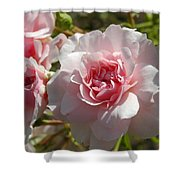 Blushing Beauty Shower Curtain