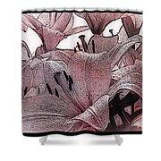 Blushing Lilies Shower Curtain
