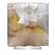 Blushing Peach Iris Flower Shower Curtain