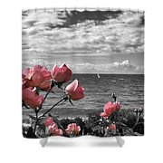 Blustery Summer's Day  Shower Curtain