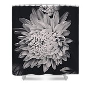 Bnw Flora Shower Curtain