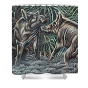 Boar Room Brawl Shower Curtain