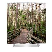 Boardwalk Through Corkscrew Swamp Shower Curtain