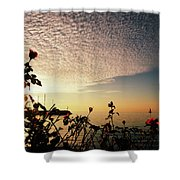 Boat At Sea And Roses Shower Curtain