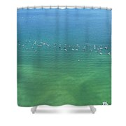 Boating Life Shower Curtain