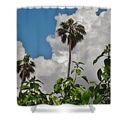 Bobbie's View Shower Curtain