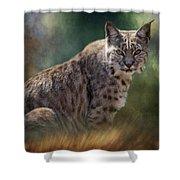 Bobcat Gaze Shower Curtain