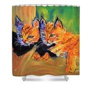 Bobcat Kittens 1 Shower Curtain