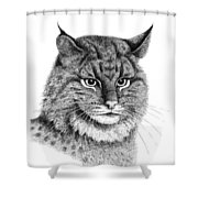 Bobcat Shower Curtain